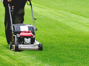 lawn-mowing-london