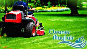 grass-cutting-mayfair