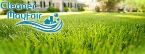 grass-cutting-services-mayfair